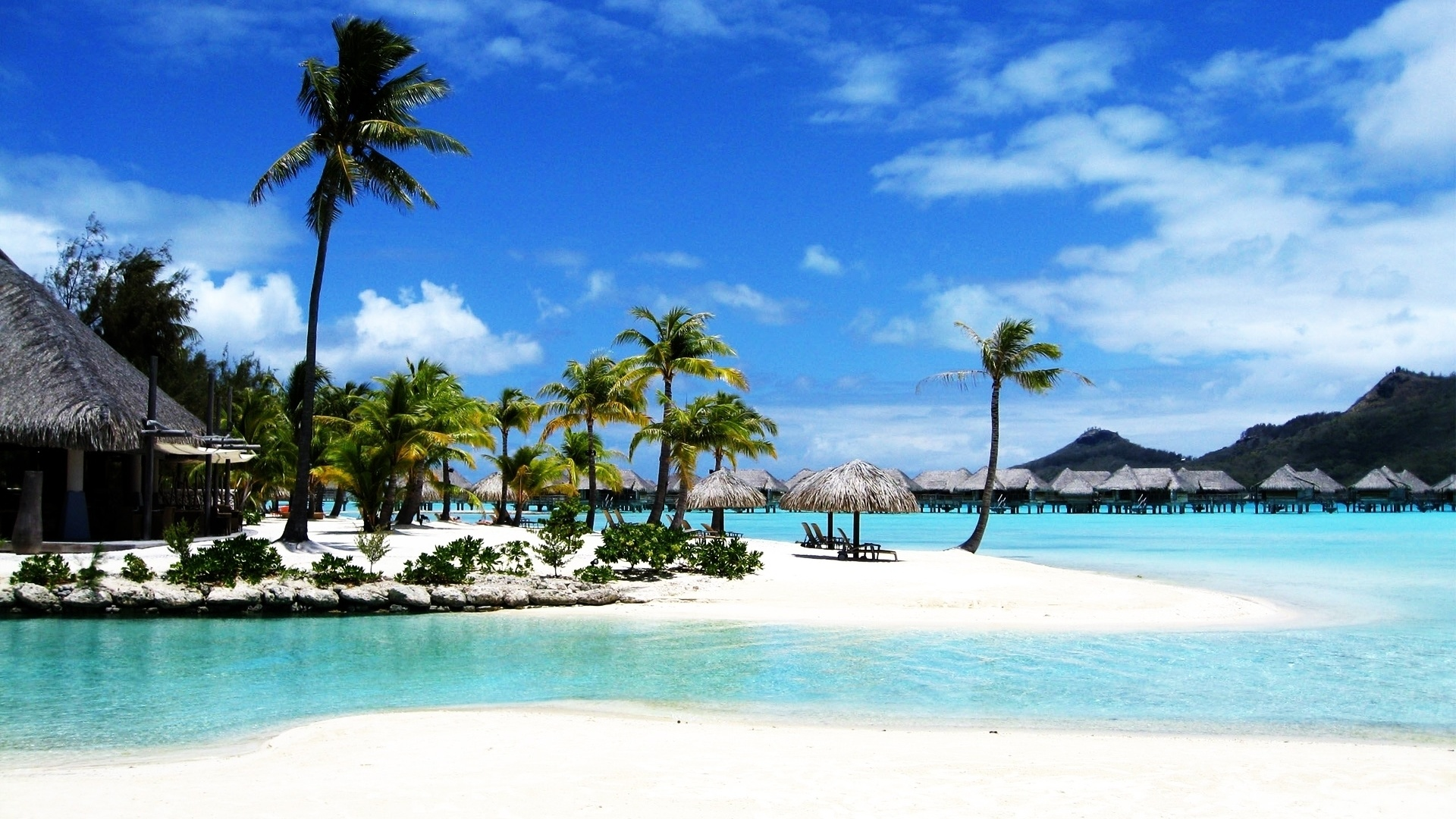 beach-palm-bora-resort-sea-travel-hd